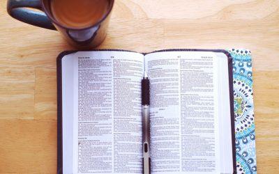 Offenbarung – ein Buch mit 7 Siegeln